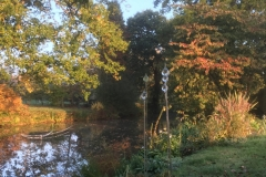 Autumn colours across the pond
